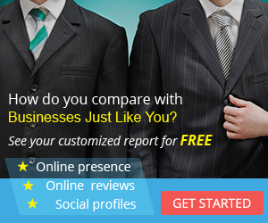 Free business snapshot report on your online presence